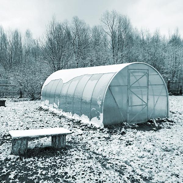 Orto invernale: consigli utili