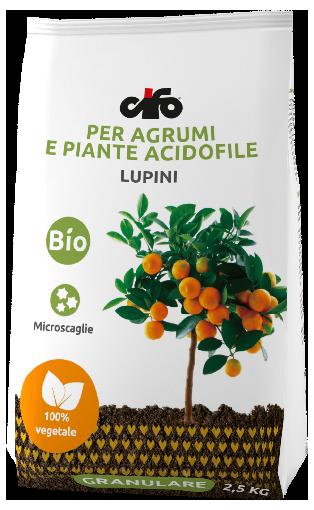 Concime granulare per agrumi e piante acidofile cifo for Acquistare piante di agrumi
