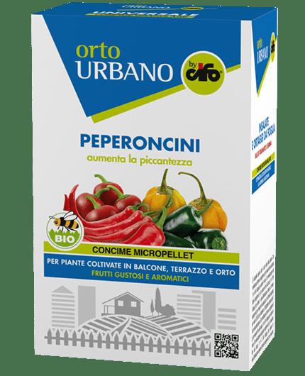 orto-urbano-peperoncini