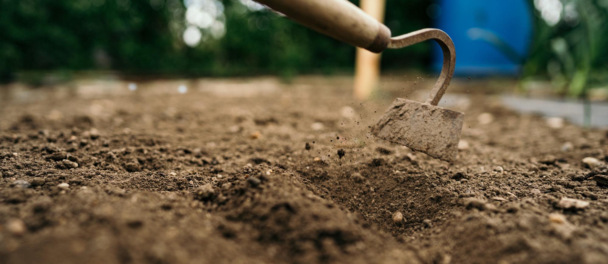 Preparare la terra nell'orto e nelle vasche in terrazzo